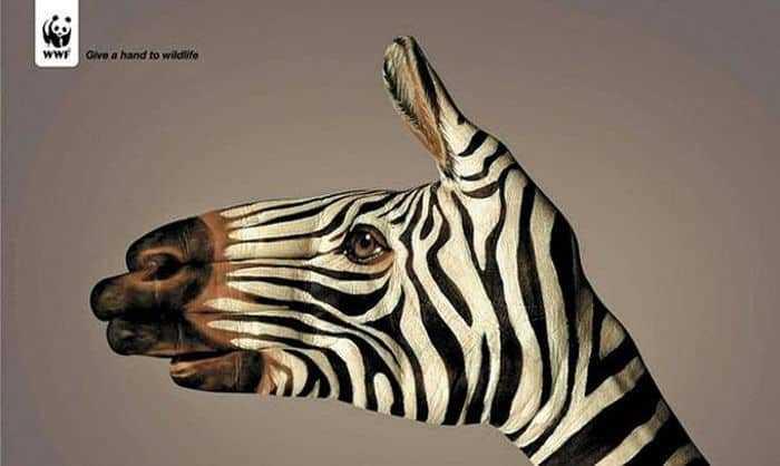 Kreativ Marketing - WWF Beispiel